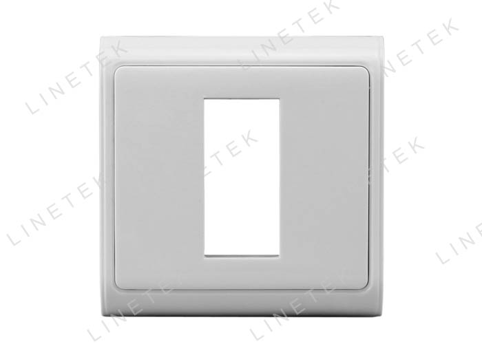 ONE MODULE OF Wall Plate